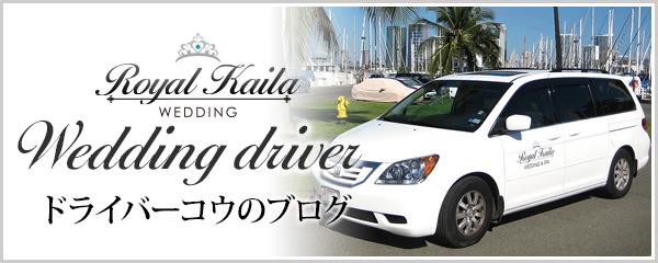 ドライバーブログ